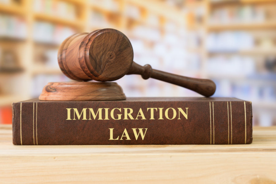 immigration fraud charges